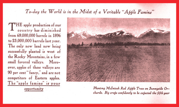 The Famous McIntosh Red of the Bitter Root Valley: An Opportunity for the Nonresident Investor and the Prospective Resident, page 5.