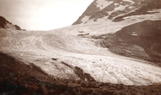 Near the foot of Blackfoot Glacier