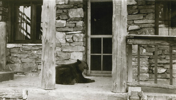 Bear on porch at Granite Chalet
