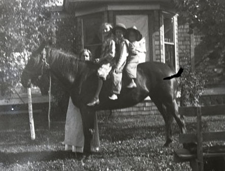 Edith Dunn and the Dunn children on a horse.