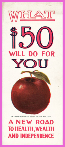 What $50 Will Do for You : A New Road to Health, Wealth and Independence, cover.