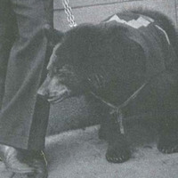 1938 sentinel.jpg
