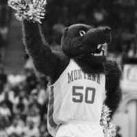 Monte, The University of Montana mascot, at a basketball game.