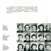 page 228.jpg