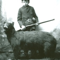 84-274,boy with rifle posed with stuffed bear.jpg
