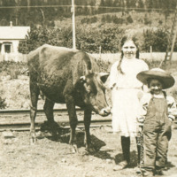 Two children and a cow