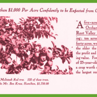 The Famous McIntosh Red of the Bitter Root Valley: An Opportunity for the Nonresident Investor and the Prospective Resident, page 10.