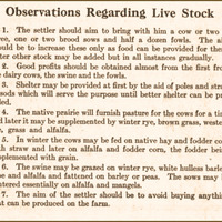 Montana: Homesteads in Three Years, page 35, livestock.