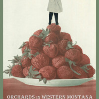 Copy of orchard poster.jpg