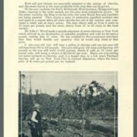 ff_page 14.jpg
