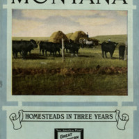 Montana: Homesteads in Three Years, cover.