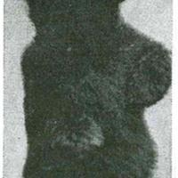 kaimin oct 1 1946 - Copy.jpg