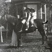 Edith Dunn and the Dunn children on a horse.